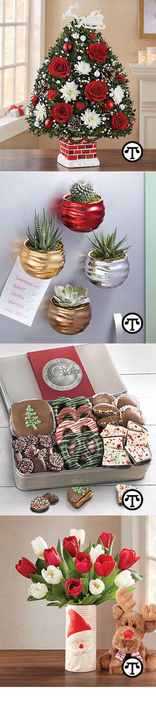 Christmas Succulent Gift Ideas.Holiday Gift Ideas Hints For Keeping Your Friends Happy